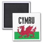 Cymru 2 Inch Square Magnet
