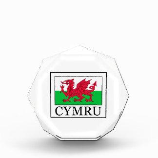 Cymru Acrylic Award