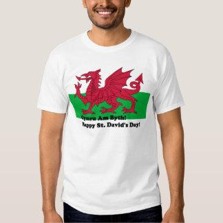 Cymru Byth - el día de St David feliz Playeras
