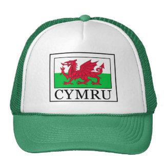 Cymru hat