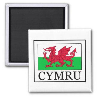 Cymru Magnet