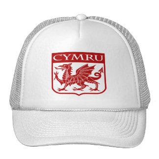 Cymru - Wales Trucker Hats