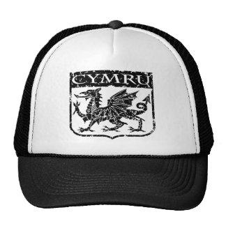 Cymru - Wales - Vintage Hat