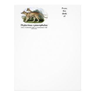 Cynocephalus del Thylacinus (tigre o lobo tasmano) Membrete Personalizado