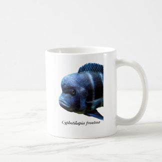 Cyphotilapia frontosa coffee mug