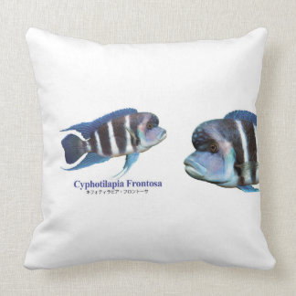 Cyphotilapia frontosa throw pillow
