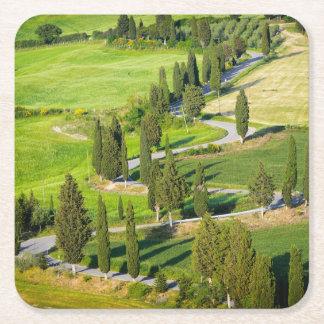 Cypress alineó la carretera con curvas en el posavasos de cartón cuadrado