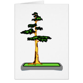 Cypress Bonsai in Tray Graphic Image Card