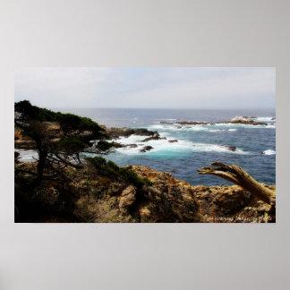 Cypress Coast Print