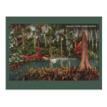 Cypress cultiva un huerto postal del vintage
