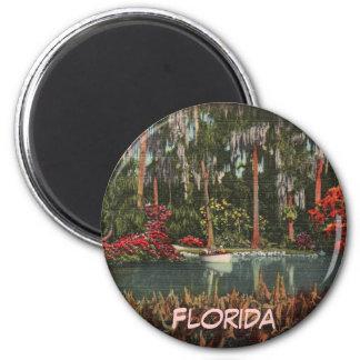Cypress Gardens Florida Magnet