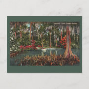 Cypress Gardens Vintage Postcard