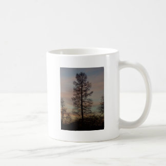 Cypress in the sunrise mugs
