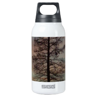 Cypress in the sunrise thermos water bottle