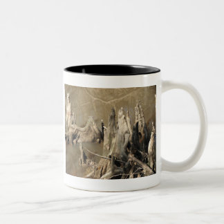 Cypress Knees Mugs