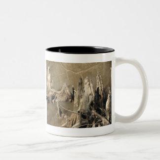 Cypress Knees Two-Tone Coffee Mug