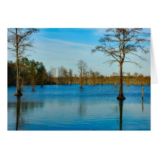 Cypress Lake Card
