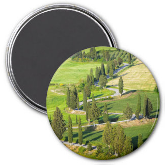 Cypress lined road in Tuscany round magnet