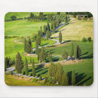Cypress lined winding road in Tuscany mousepad