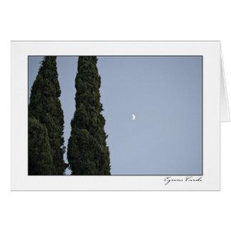 Cypress Moon Greeting Card