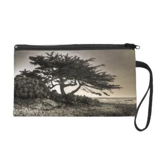 Cypress On The Coast Wristlet Purses
