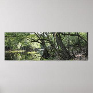 Cypress River Panoramic Poster