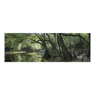 Cypress River Panoramic Poster -60x20 -or smaller