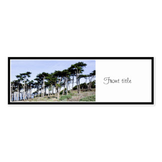 Cypress Trees at Sutro Park, San Francisco Double-Sided Mini Business Cards (Pack Of 20)
