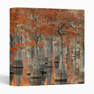 Cypress Trees | George Smith State Park, Georgia 3 Ring Binder