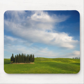Cypress trees in Tuscany Mouse Pad