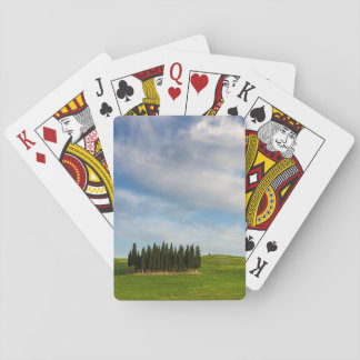 Cypress trees in Tuscany poker cards deck
