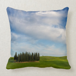 Cypress trees in Tuscany throw pillow