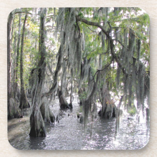 Cypress Trees on Lake Phelps NC Cork Coasters