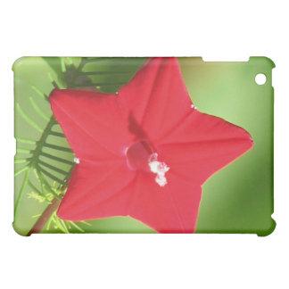 Cypress Vine Flower Case For The iPad Mini