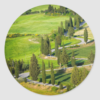 Cypress winding road in Tuscany round sticker
