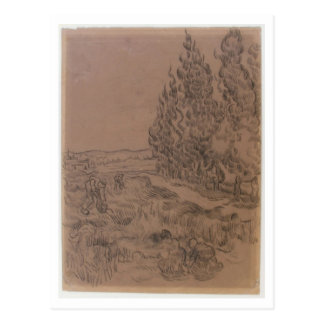 Cypresses Four People Working, Van Gogh Fine Art Postcard