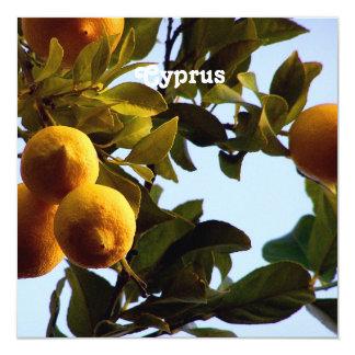 Cyprus Lemon Grove Card