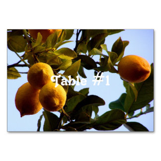Cyprus Lemon Grove Card