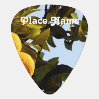 Cyprus Lemon Grove Guitar Pick