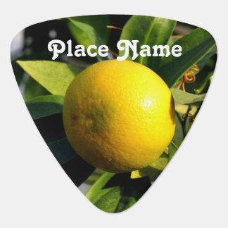 Cyprus Lemons Guitar Pick