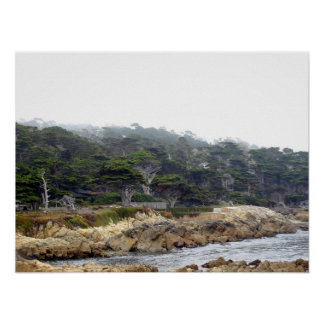 Cyprus Point on the Monterey Peninsula Poster