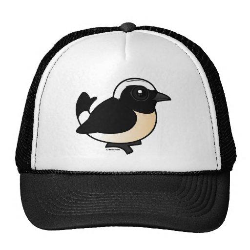 Cyprus Wheatear Trucker Hat