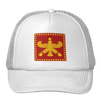 Cyrus la gran bandera estándar gorro