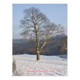 Czech Happy New Year postcard