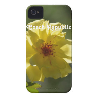 Czech Republic Roses iPhone 4 Covers