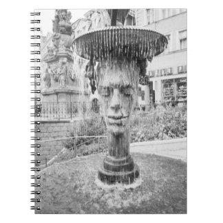 CZECH REPUBLIC, West Bohemia, Karlovy Vary Notebook