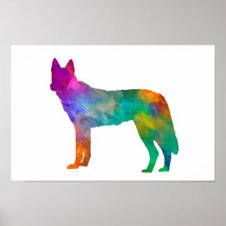 Czechoslovakian Wolfdog in watercolor Poster