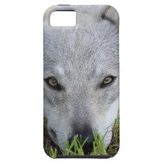Czechoslovakian Wolfdog iPhone SE/5/5s Case
