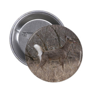 D0001 White-tailed  Deer button