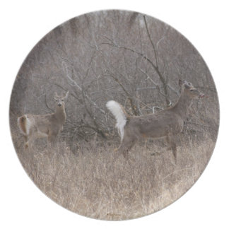 D0001 White-tailed Deer Young Bucks Melamine Plate